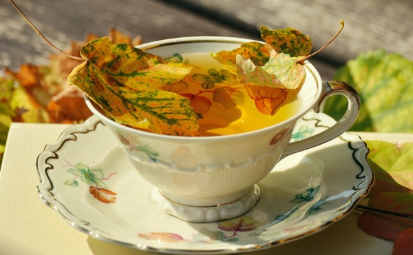 Teacup with leaves in it